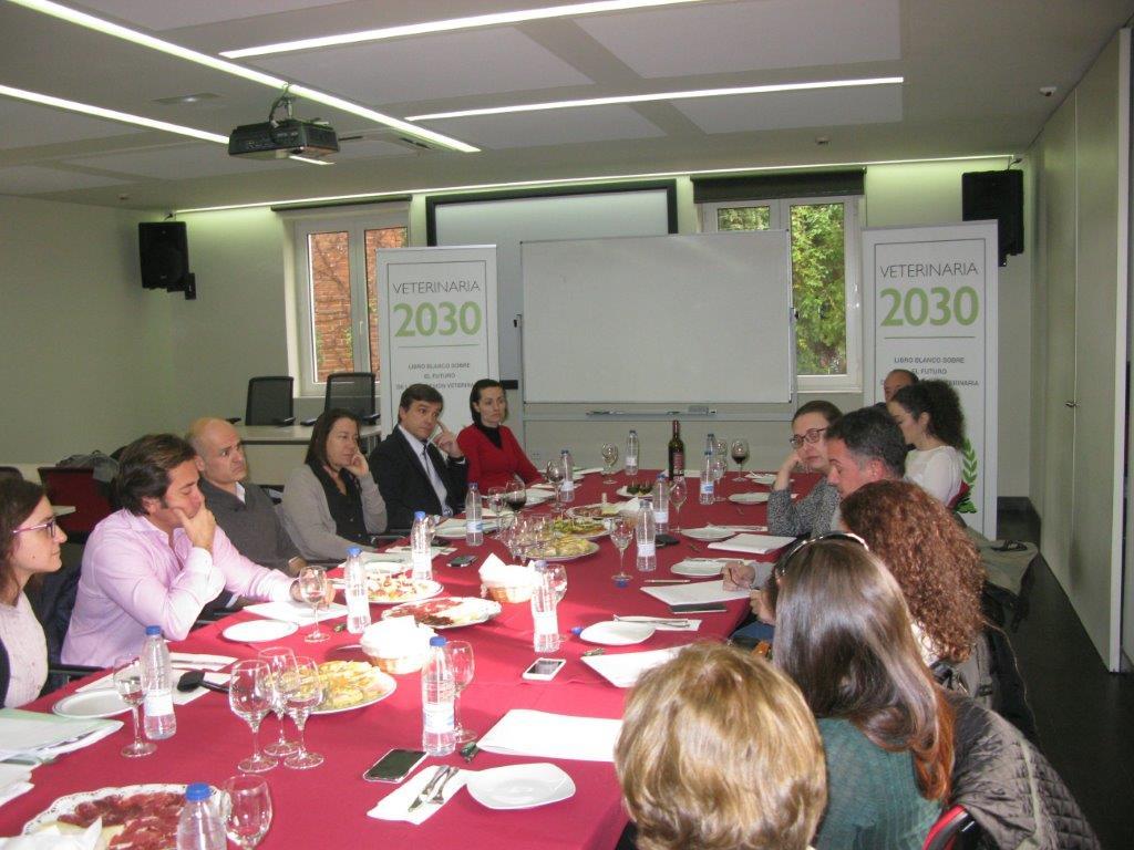 """El proyecto """"Veterinaria 2030"""" inicia la segunda fase de investigación cualitativa"""
