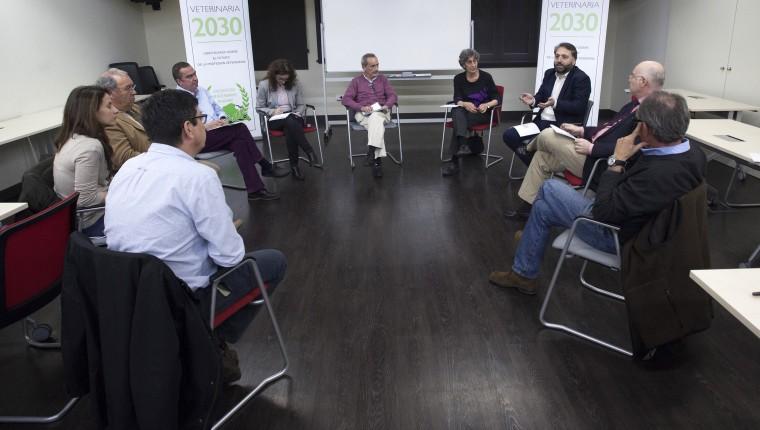 Veterinaria 2030 culmina la realización de técnicas cualitativas